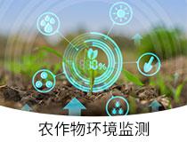 210x160_农作物环境监测
